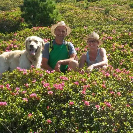 Impressionen vom Frötscherhof Mellaun im Sommer