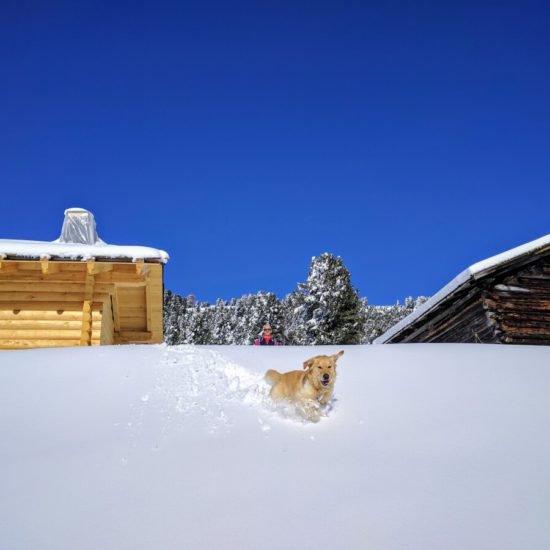 froetscherhof-meluno-vacanze-invernali-bressanone-alto-adige-17