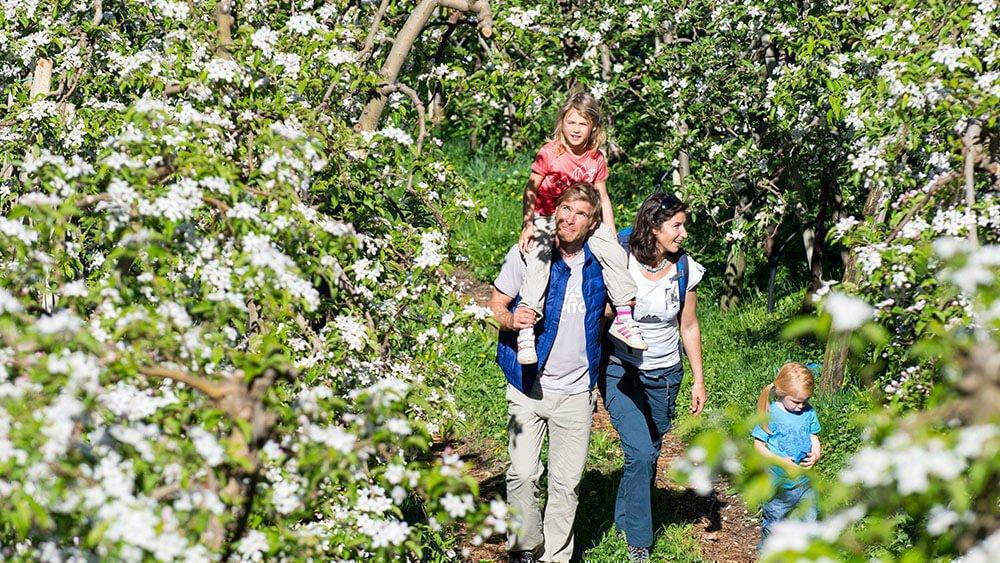 Gemangerhof Mellaun - Zu jedes Jahreszeit - Frühling, Sommer, Herbst & Winter