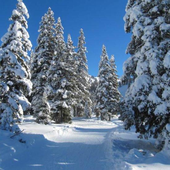 germangerhof-meluno-valle-isarco-inverno-02