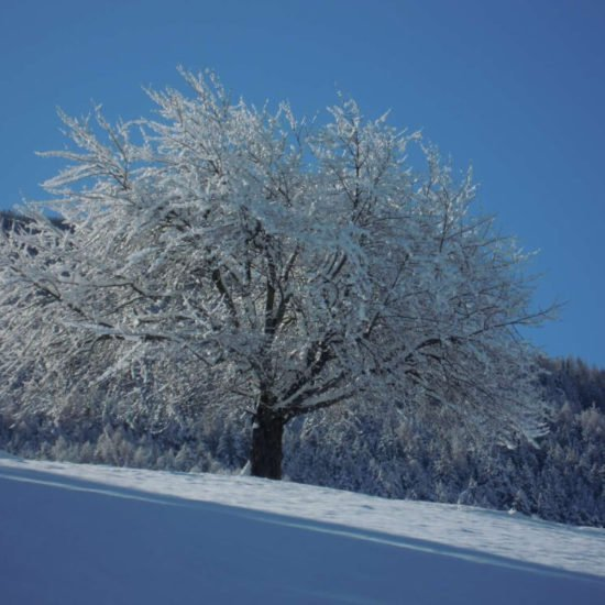staudacherhof-bressanone-alto-adige-inverno-09
