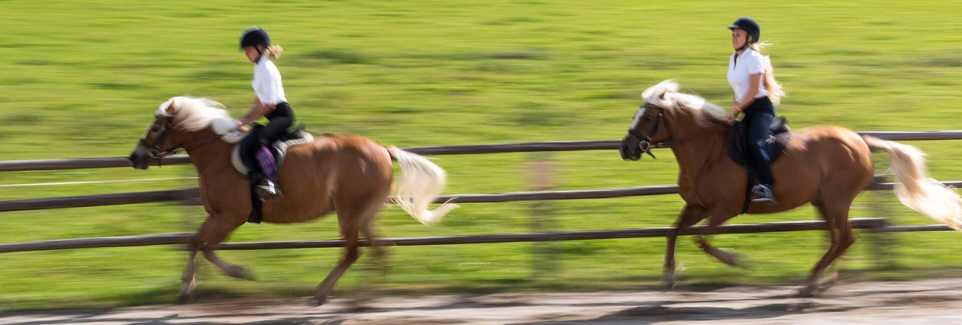 vacanze-a-cavallo-widmannhof-03