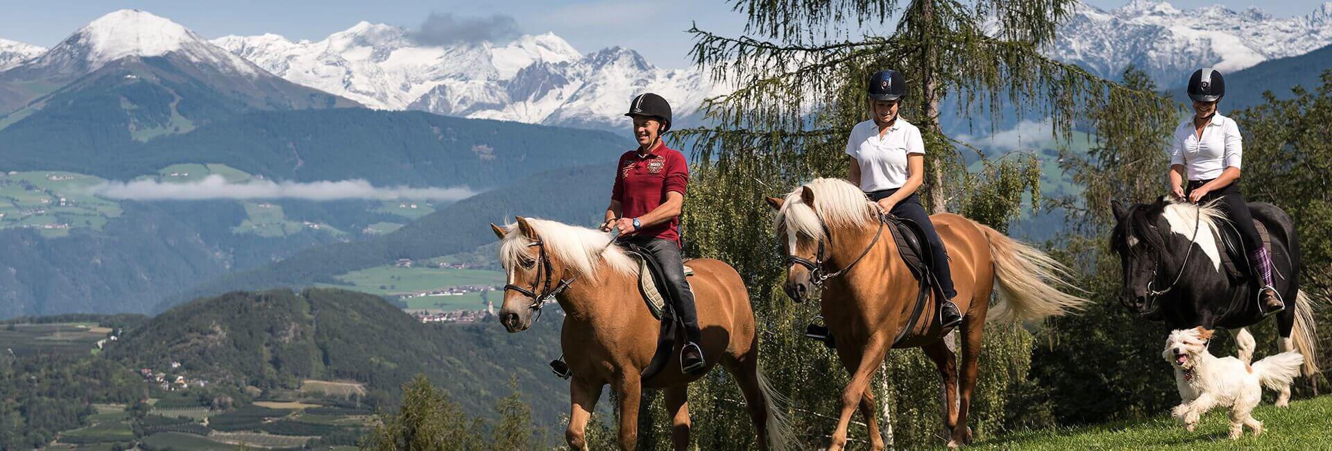 vacanze-a-cavallo-widmannhof-02