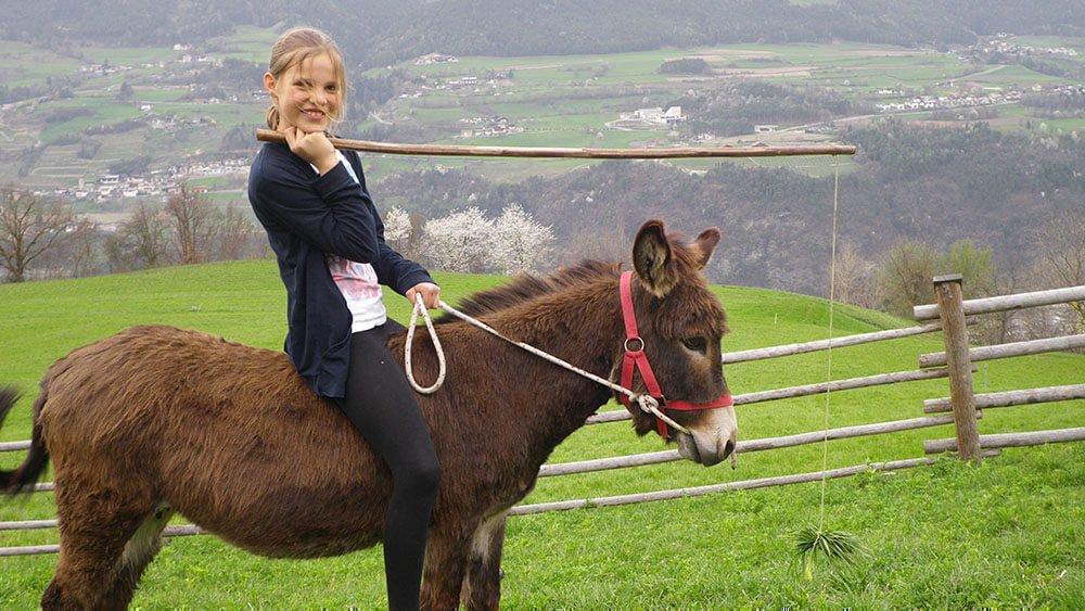 Sedlhof Klerant - Familienurlaub in den Dolomiten