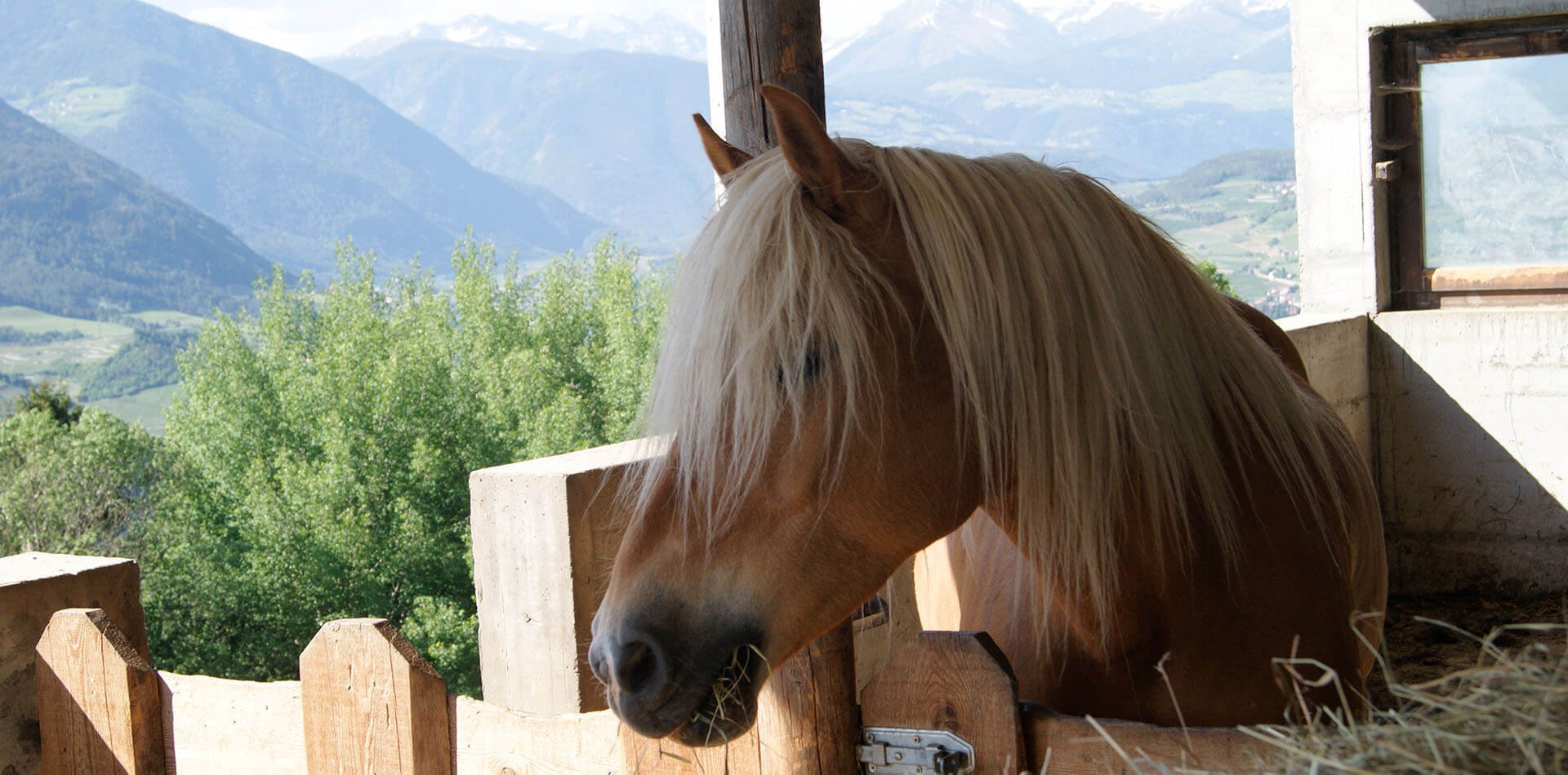 Sommerferien in den Dolomiten/Südtirol - Ferienwohnung in Brixen